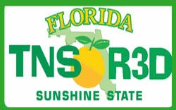 Florida Teens Read License Plate