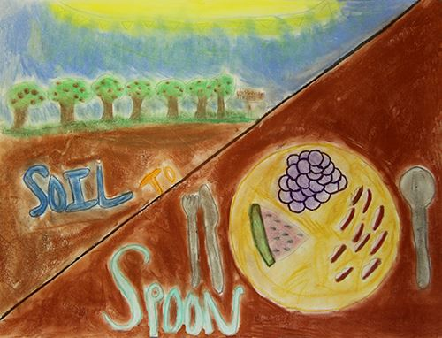Grade 4 to 6, Third Place Winner: Ashton Bosso